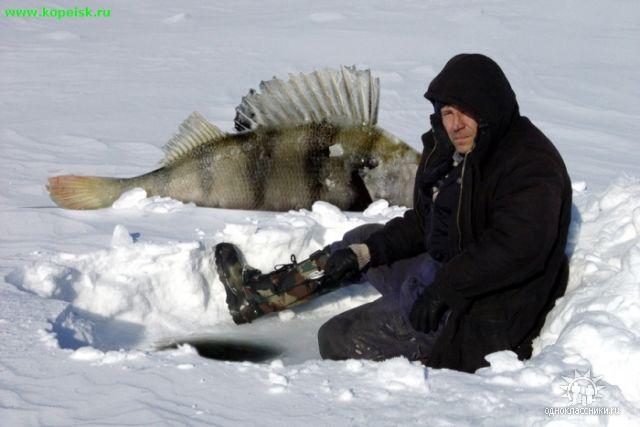 прогноз клева рыбы во  тихвинском районе