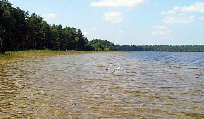 Озеро, святое в Ивановской области: фото 2020, как доехать, отдых