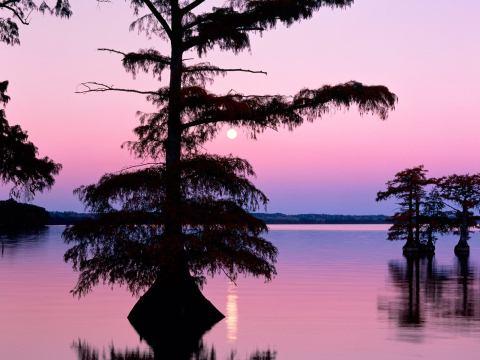Озеро Байкал охраняется: государством был выделен 1 млрд. рублей на очистку и охрану водоема