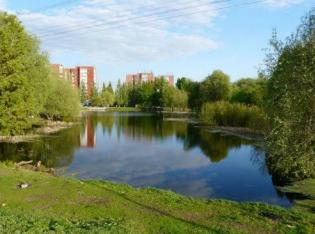 В одном из парков Орска на озере выловили труп