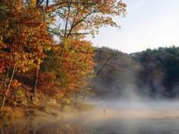 Донные отложения в озерах