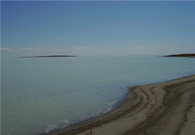 Два озера Псковской области стали природными памятниками