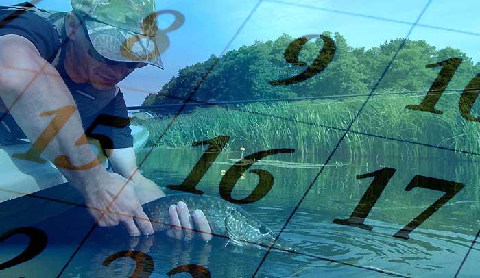 Рыболовные календари и прогнозы