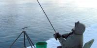 Зимняя рыбалка с фидерным удилищем