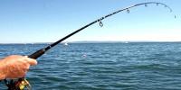 Советы рыболову: луна и ее фазы никакого отношения к рыбалке не имеют