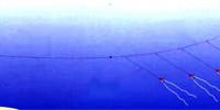 «Кораблик» (водяной змей)