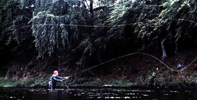 Лов рыбы нахлыстом