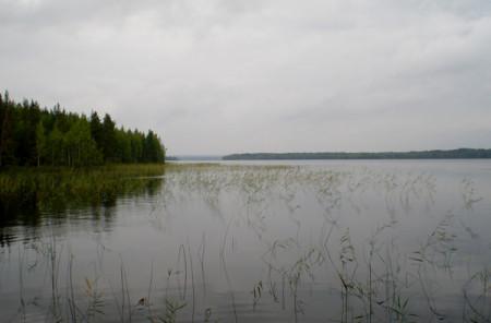 В Онежском озере был найден труп неизвестного мужчины