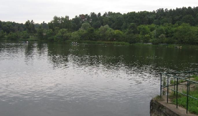 Пруд на Обводном канале